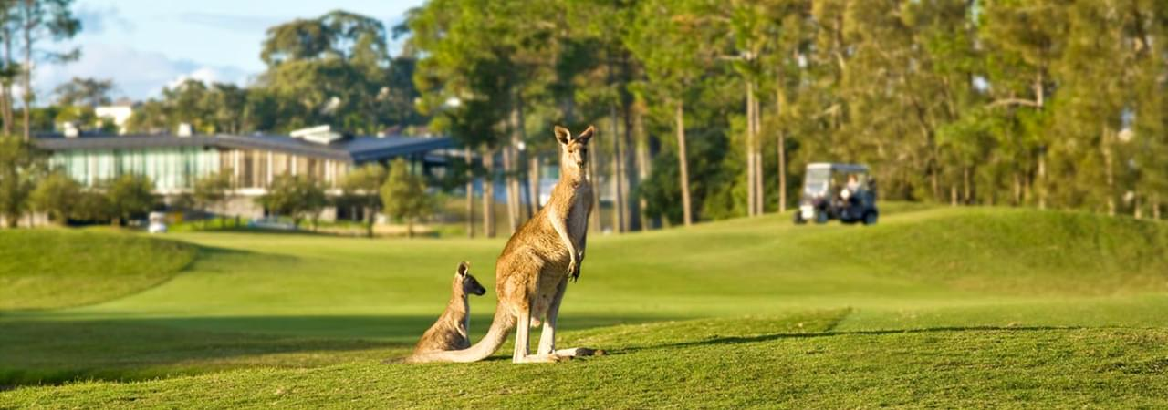 Golfurlaub Australien