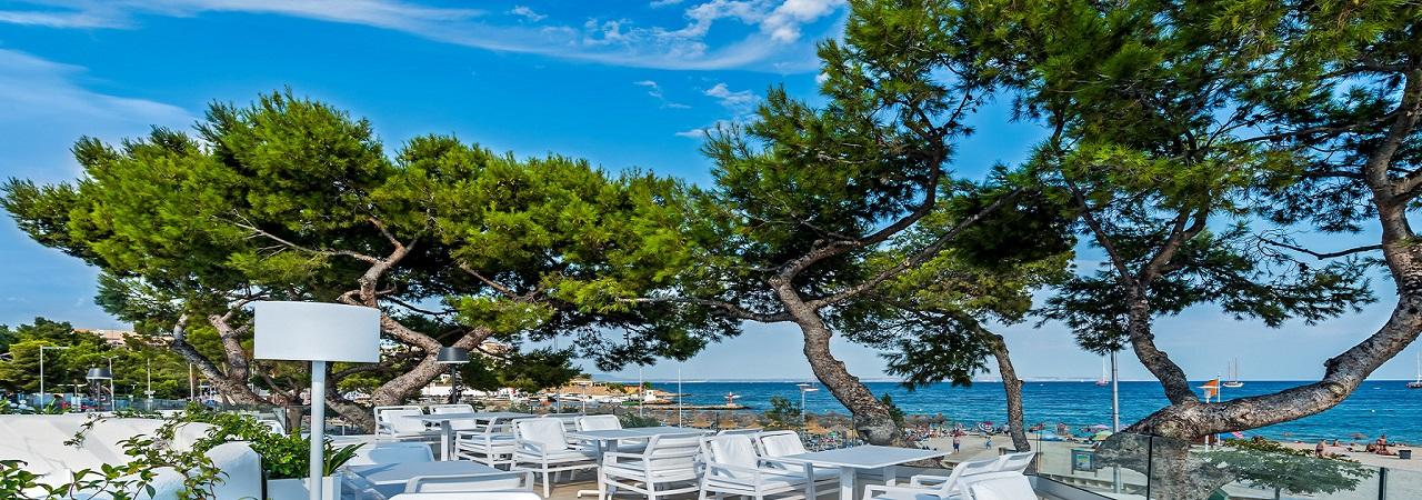 Fergus Style Palmanova - Spanien