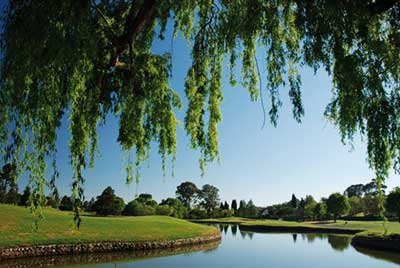 Randpark Golf Course